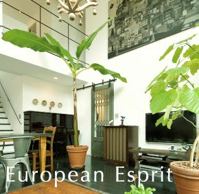 european esprit